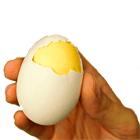 приготовить омлет от ТД Золотое яичко