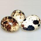 перепелиное яйцо самое полезное купить в Москве