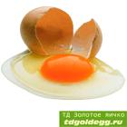 Целое яцо купить оптом с доставкой по москве