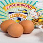 интересное о яйцах