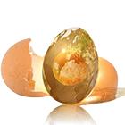 скорлупа от куриного яйца