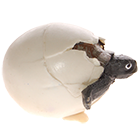 яйца рептилий